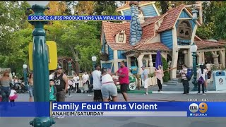 Families Visiting Disneyland Attempt To Break Up Family Brawl In Mickey's Toontown