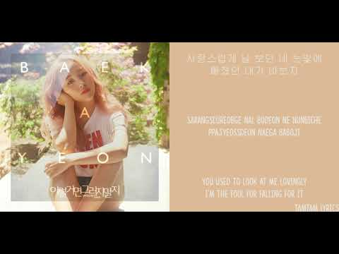 Shouldn't Have - Baek Ah Yeon X Young K Lyrics [Han,Rom,Eng]