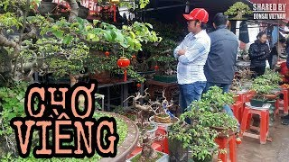 Chen lấn mua Cây Cảnh lấy Lộc ở chợ Viềng Nam Trực, Nam Định