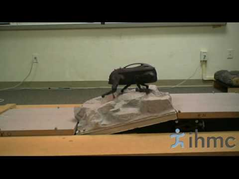 Learning Locomotion — IHMC Robotics Lab