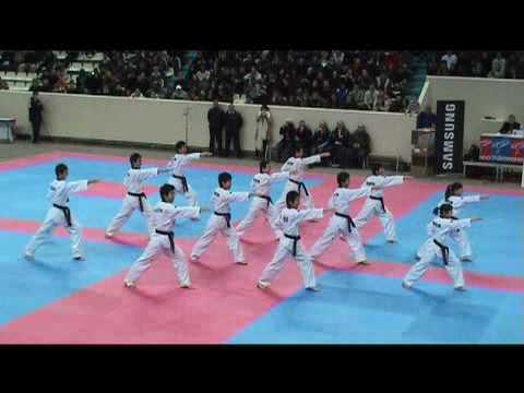 Korean National Taekwondo Demonstration Team - Coupe de l'Ambassadeur de Corée(13.12.08)
