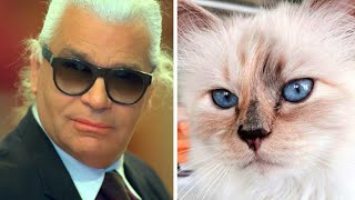 Karl Lagerfeld's Cat Mourning Loss of Owner