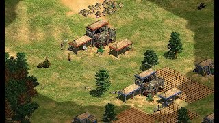 Top Unusual (Outside the Box) Strategies - Age of Empires 2