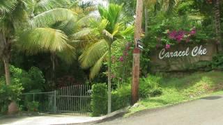 CARACOL CHE : Private Tropical Estate  - Rincon, Puerto Rico