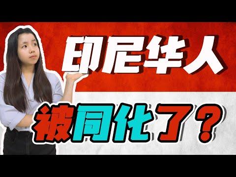 十分钟了解印尼华人!印尼排华事件的真相!当地华人现在怎样了?【这件小事 EP22】