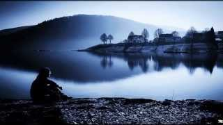 David Gilmour - Delicate Sound Of Thunder        -         Evanescens 55