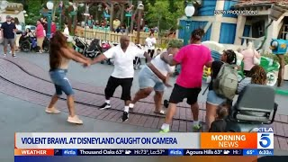 Viral Video Shows Fight at Disneyland