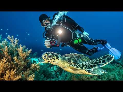 Reefmaster 4K Camera