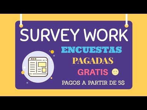 Cómo funciona Survey Work encuestas
