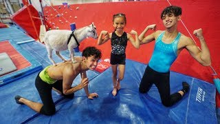 LITTLE SISTER vs. GOAT GYMNASTICS COMPETITION!