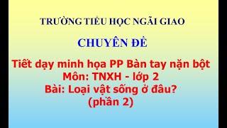(Phần 2) Tiết dạy minh họa PP Bàn tay nặn bột - TNXH - lớp 2: Loại vật sống ở đâu?