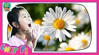 Learning English for Kids Flower Names in English with Pictures