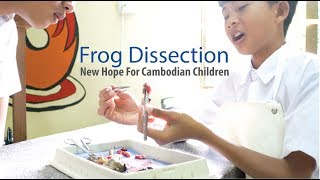 NHCC Science Class - Frog Dissection