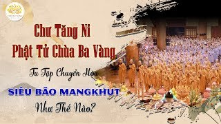 Chư Tăng Ni Phật Tử Chùa Ba Vàng Tu Tập Chuyển Hóa Siêu Bão MANGKHUT Như Thế Nào?
