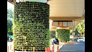 Vertical Gardens to Come Up on Pillars of Flyovers in Hyde..