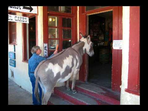 tengo un burro(Priscila )