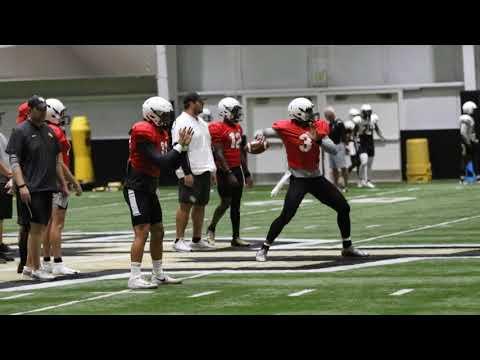 UCF Quarterbacks Aug. 16