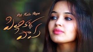 Pilli Kalla Paapa    Telugu Short Film 2016    A Gopinath Reddy's Hilarious Torture