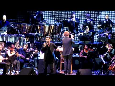 Serj Tankian - The Charade {Symphony} [Live in Yerevan] HD