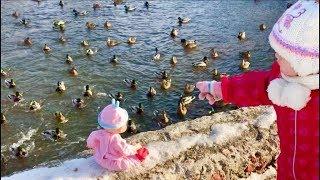 Милана  Нашла Пять маленьких утят | Five little ducks | kids song | Милана кормит уток - YouTube
