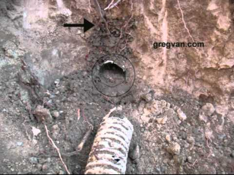 Backyard Drainage Failure Perforated Drain Pipe Problems