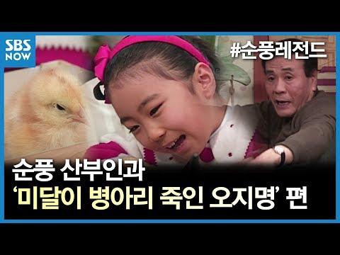 SBS [순풍산부인과] 레전드 시트콤 : '미달이 병아리 죽인 오지명' 편