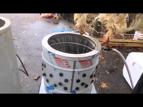 video Electric Scalding Machine (For Poultry Processing)