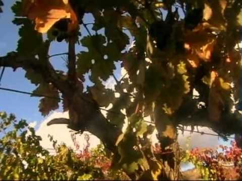 Explore La Rioja 2011 ENGLISH .wmv