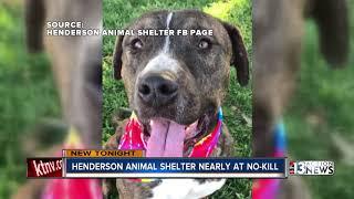Henderson Animal Shelter almost a no-kill shelter