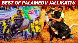 Best Bulls of Palamedu Jallikattu | Top 10 Palamedu Jallikattu kaalai