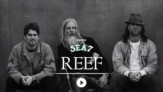 REEF live at Sea7