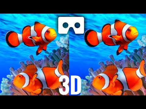 Best VR 3D AQUARIUM 4K Real Life Colorful Fishes | Cardboard Video VR 3D SBS 4K