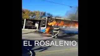 Se incendió un colectivo de la 319