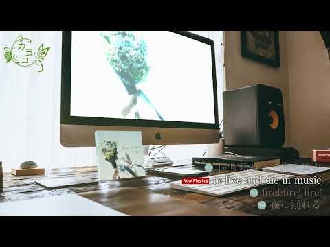 【カヨコ】New Single 「僕ら死ぬまで旅の途中」Trailer