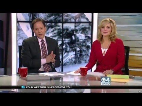 Minneapolis MN Matchmaker & Divorce Attorney couple