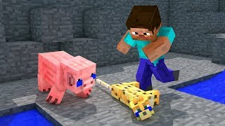 Top 5 Monster School VS Minecraft Life - Minecraft Animation