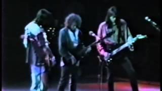 Boston - Live at Hamilton, Ontario 1988