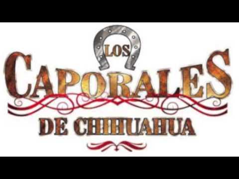 Los Caporales De Chihuahua El Desvelado Y La Vi Estrenando Novio.