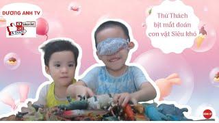 Dương Anh bịt mắt giới thiệu đồ chơi động vật (Duong Anh blinded the introduction of animal toys)