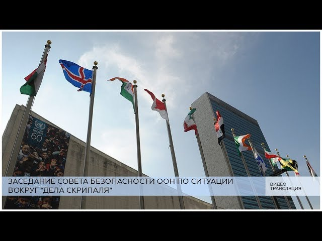 Заседание СБ ООН по «делу Скрипаля»