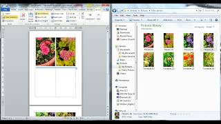 Drag and drop a picture into Word Document (Easily - WITHOUT picture distortion).