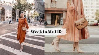 My First Week As a Full Time Blogger