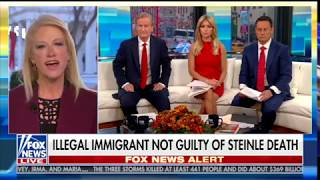 Kellyanne Conway on Kate Steinle Decision: 'This is Why People Want the Wall Built'