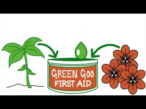 Shop Green Goo Fresh & Natural Deodorant at Best Prices