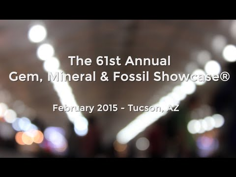 Gem, Mineral & Fossil Showcase in Tucson, AZ (Feb. 2015)