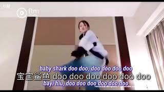 冯提莫 feng timo Baby Shark(宝宝鲨鱼)bayi hiu