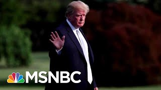 The Unprecedented Corruption Of President Donald Trump | All In | MSNBC