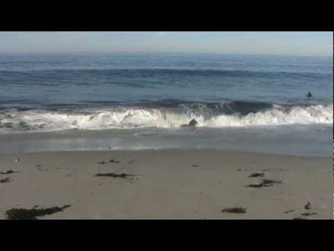 Baixar ♥♥ Relaxing 3 Hour Video of California Ocean Waves