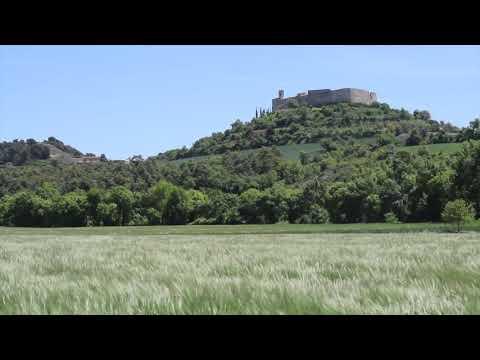 Els mars d'ordis de la Segarra