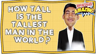How Tall is the Tallest Man in the World? | Officially Amazing | Nugget